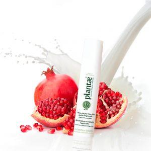 Plantae / Pomegranate Fruit-