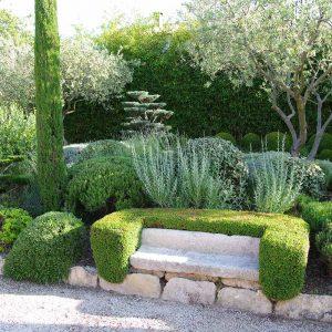 Adoptez un jardin méditerranéen